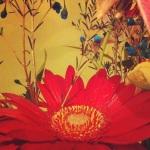 Taken by beckybeare using Rise filter. Link - http://instagr.am/p/SX7bl-KxW5/