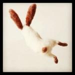 Taken by kegrand using Hefe filter. Link - http://instagr.am/p/R1_GfWt55h/