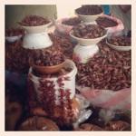 Taken by sarahsbag using Sierra filter. Link - http://instagr.am/p/RluybhAgs3/