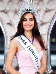 Miss Turkey 2014